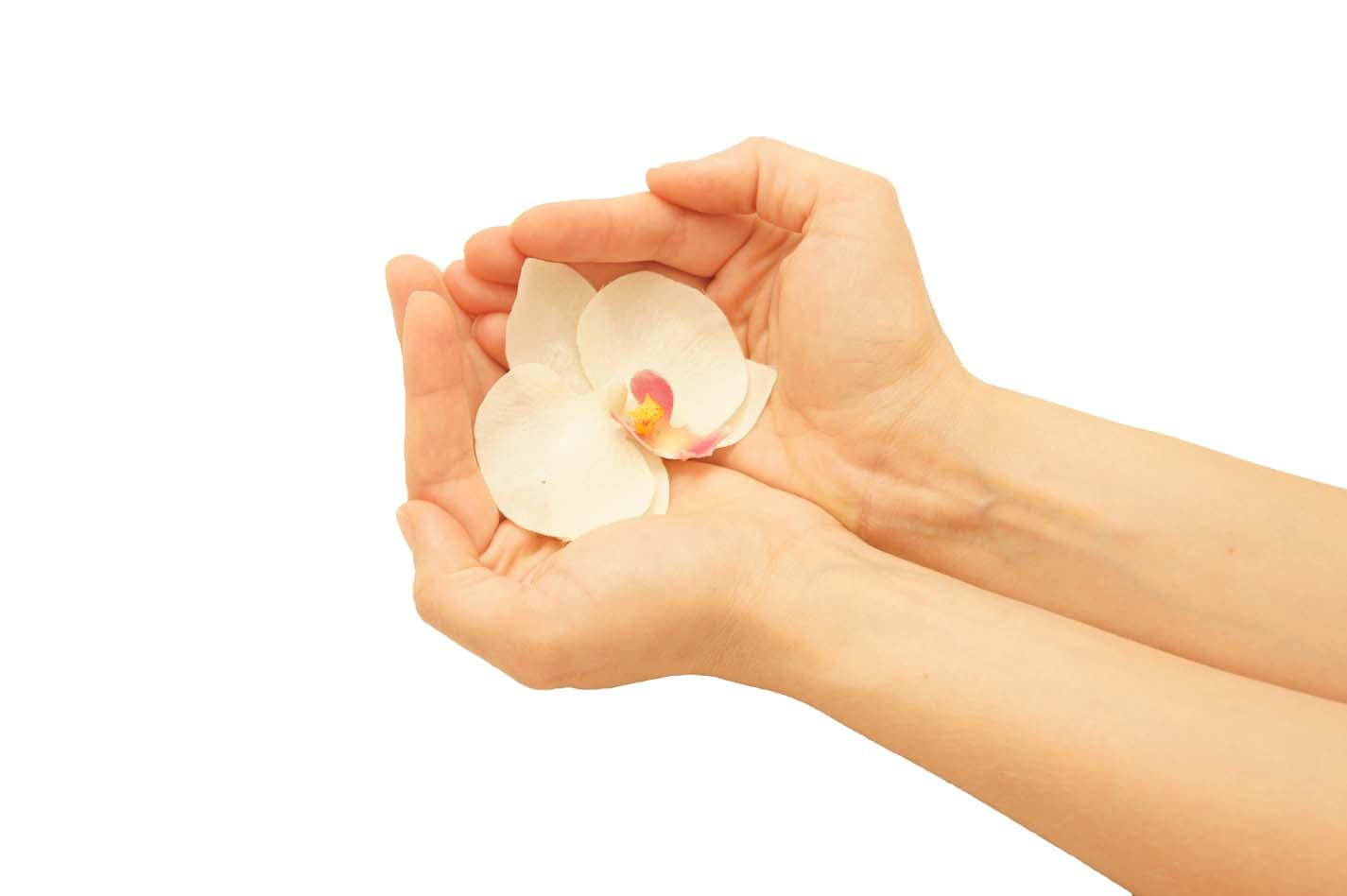 bloem-in-hand1