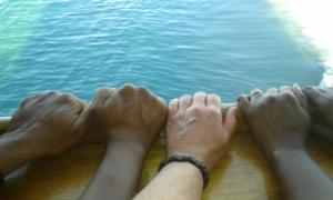 Mijn vrienden en ik, in vrede